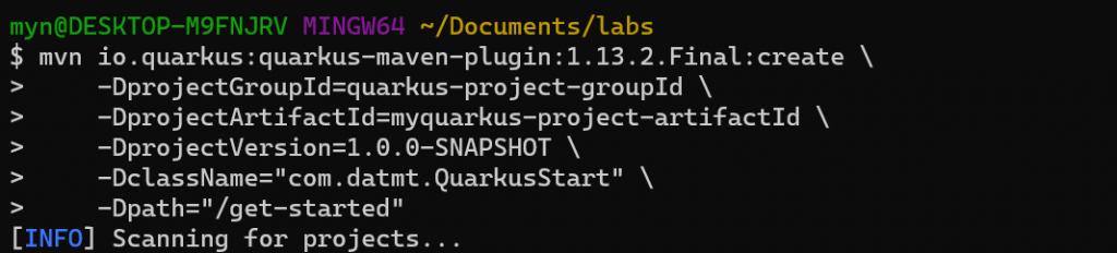 Maven start to create quarkus project