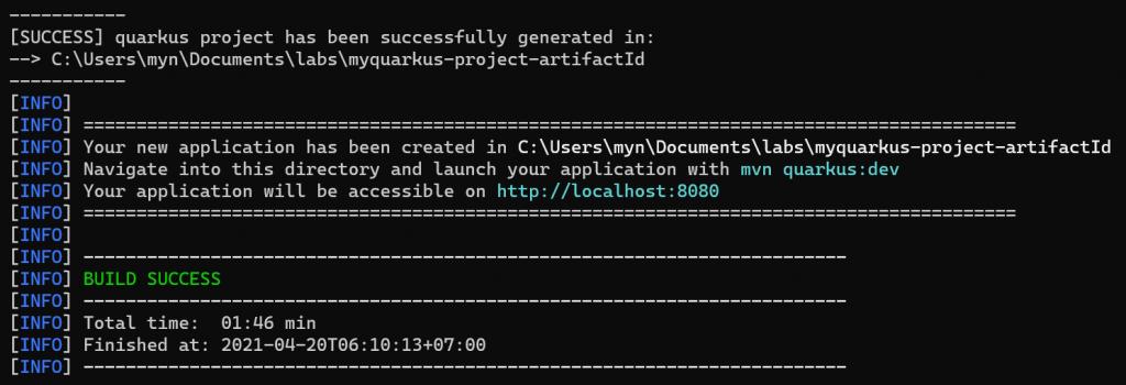 create quarkus starter project successfully.